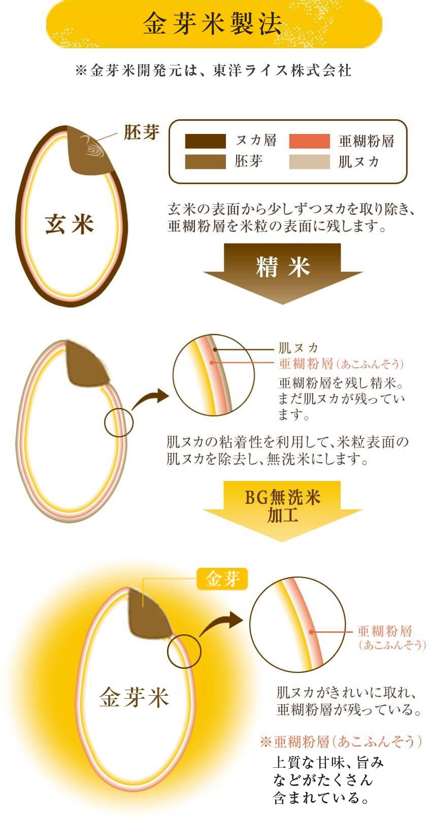 金芽米製法