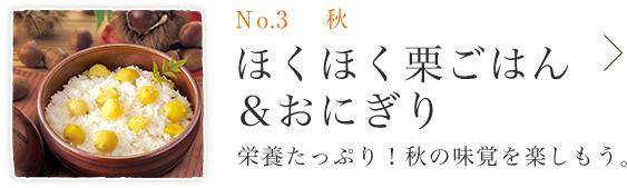 No.3 秋 ほくほく栗ごはん&おにぎり
